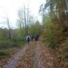 1013Pfaelzerwald Wandermarathon-001