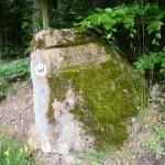 Ri049 R- Wiligartaburg