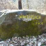 Ri089 Immensack