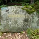 Ri151 Wasserstein