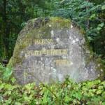 Ri201 Ruine Faunerhof