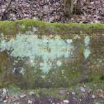 Ri218 Ruine Karolingisches Gehoeft