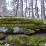 Ri219 Burghalder Fels