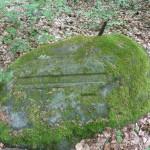 Ri270 Ruine Jagdhaus Schaudichnichtum