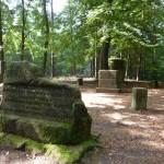 Ri289 Stumpfwaldgericht