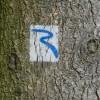 Rimbachsteig 10